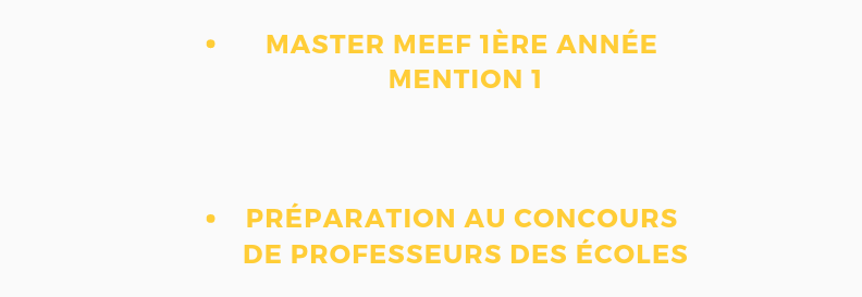 Candidater au Master MEEF 1ère année et Préparation au concours de professeurs des écoles